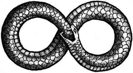 8-snake.jpg?w=640